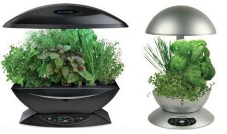 AeroGarden cuida tus plantas