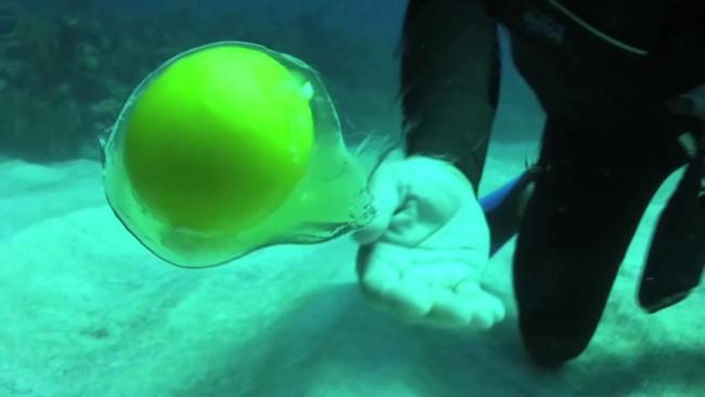 Lo que pasa cuando abres un huevo a 20 metros de profundidad bajo el agua