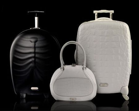 La maleta Hero de Alexander McQueen para Samsonite