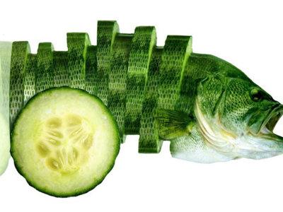 Comida fusionada con animales en el arte digital de Sarah DeRemer
