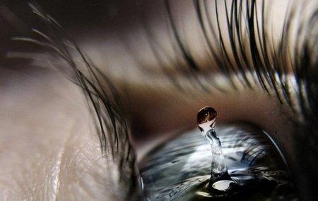 ojos1.jpg