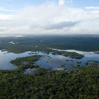 ¿Quién tiene derecho a un dominio de primer nivel? La lucha de Amazon contra ocho países americanos