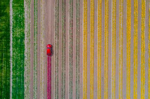 """El mundo visto """"por todo lo alto"""" en las espectaculares fotografías de drones ganadoras del certamen Drone Photo Awards 2021"""