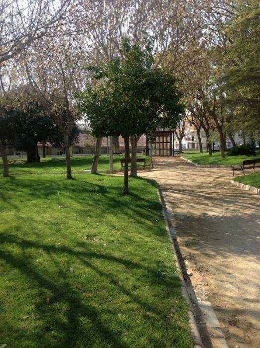 Foto de Muestra cámara nuevo iPad (2/4)
