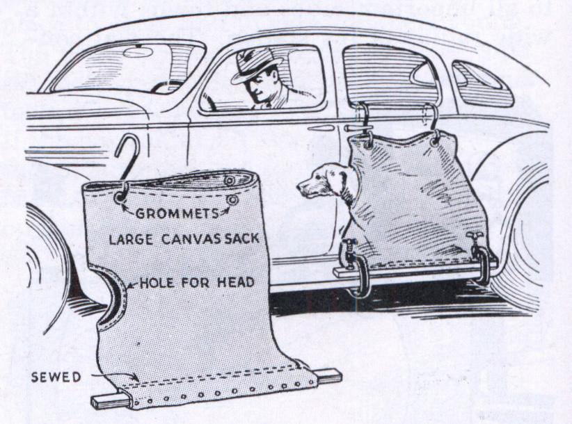 Dog Car Sack