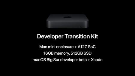 Apple Developer Transition Kit Mac Arm 1