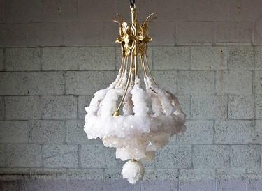 Las lámparas de la colección Overgrown revolucionarán tu hogar con vida propia