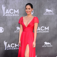 Olivia Munn Academy of Country Music Awards 2014