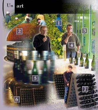 El arte del champagne
