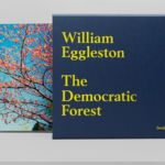 Nueva y atractiva reedición de 'The Democratic Forest', obra esencial de William Eggleston