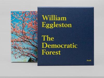 Nueva y atractiva reedición de 'The Democratic Forest', obra esencial de William Eggleston