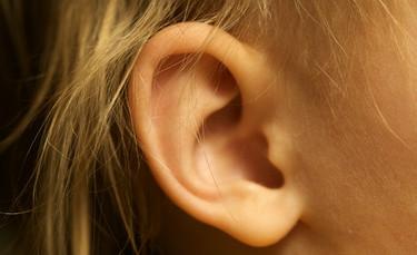 El oído en la cocina y la importancia de los sonidos