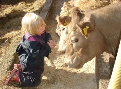 Una niña de cuatro años que sólo habla con animales, Rose Willcocks