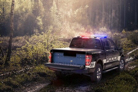 Ford F 150 Policia 2