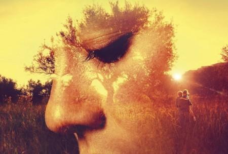 'El olivo', una película con mucho encanto