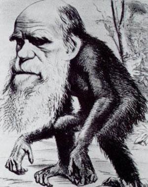 Comparando las primeras frases de dos célebres novelas para entender la naturaleza humana (y II)