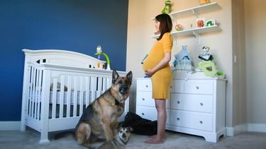 Una foto al día: genial time lapse del embarazo en 90 segundos