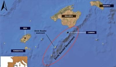 [Vídeo] La gran diversidad de fauna descubierta en las Baleares