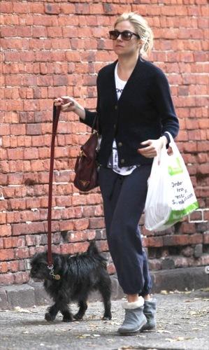 Sal a pasear al perro con estilo, copia a Sienna Miller IX