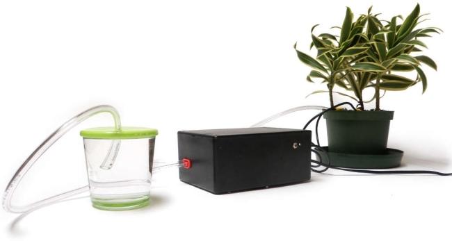 Plantas y Arduino