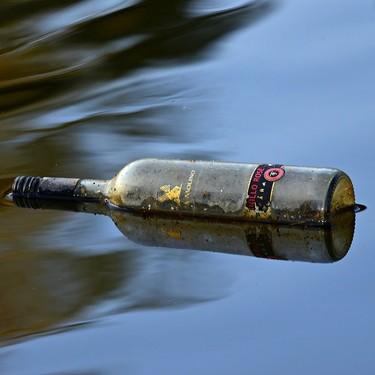 Esto le pasa a tu cuerpo cuando bebes alcohol. Múltiples estragos