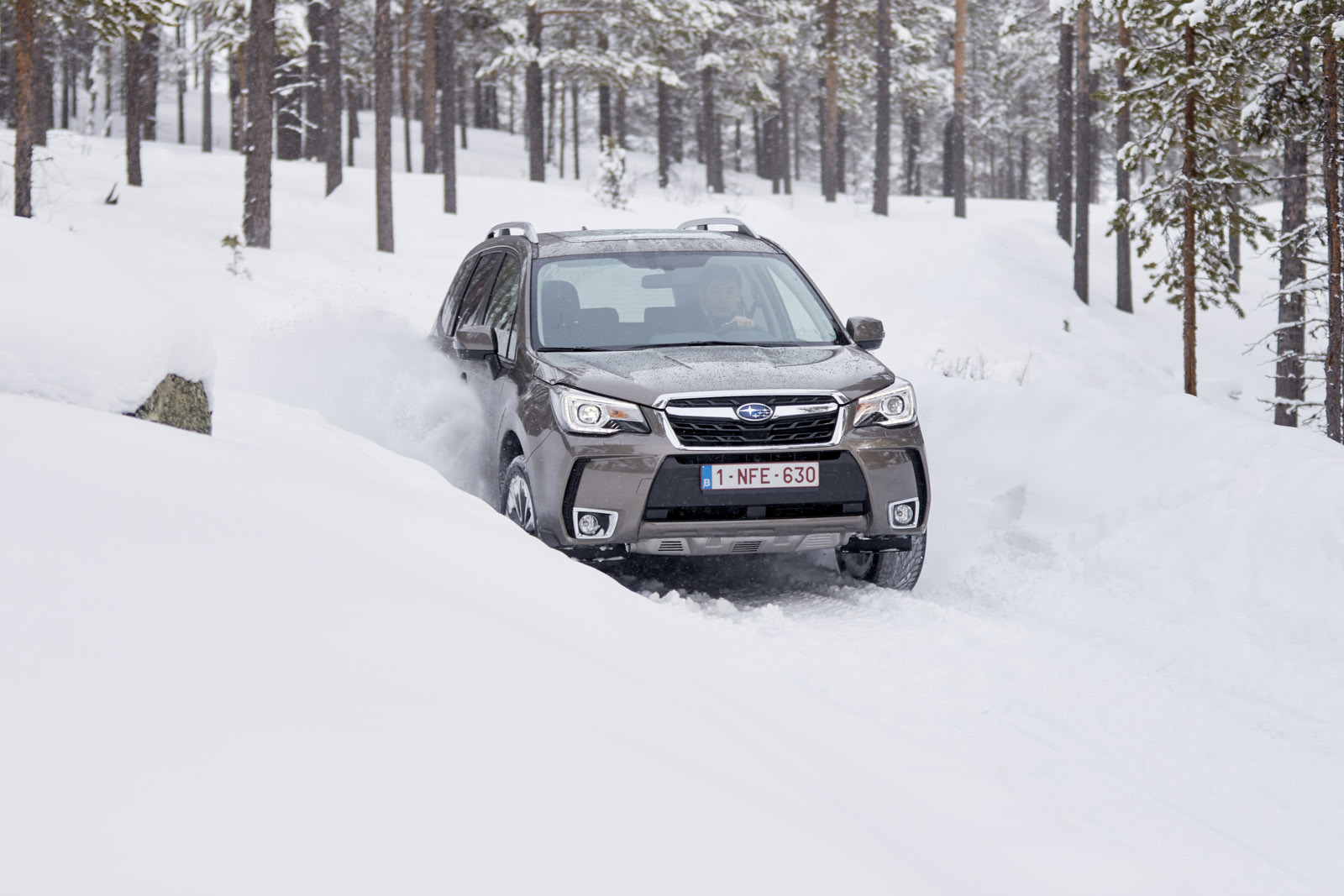 Foto de Subaru Snow Drive 2016 (9/137)