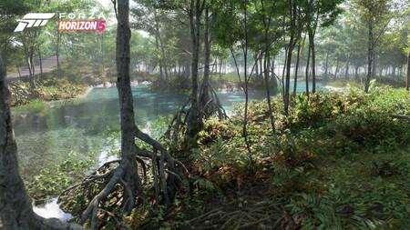 Fh5 Biome Swamp 02 16x9 Wm