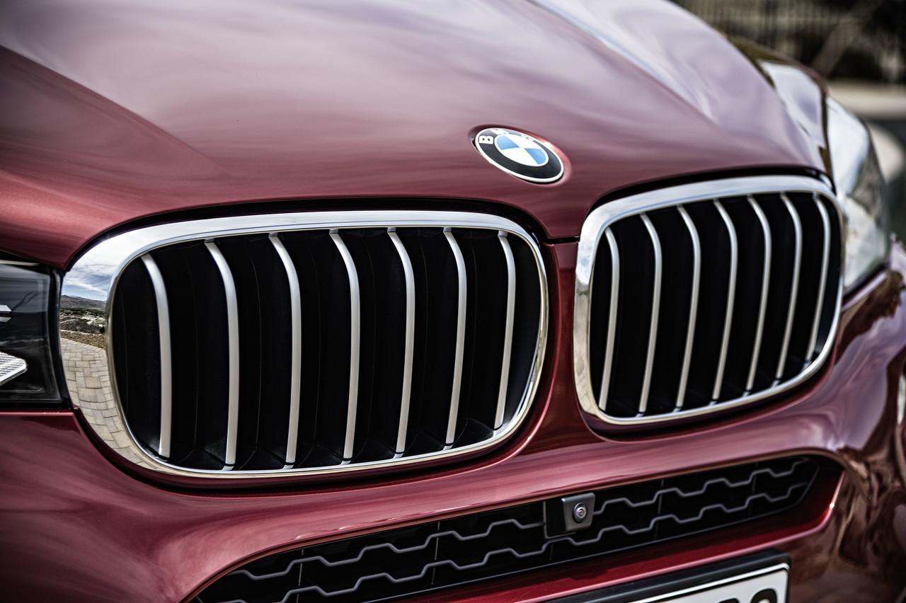 Foto de BMW X6 2014 (31/96)