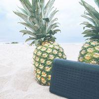 Altavoces grandes y potentes para montar una fiesta en la playa: consejos de compra y modelos destacados