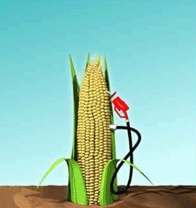 ¿El biocombustible es un fraude 'flower power'?