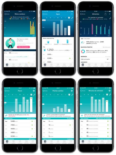 Fitbit App Info
