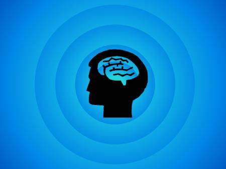 Brain 494152 960 720