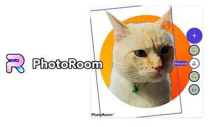 PhotoRoom, la popular app de iPhone para vaciar fondos de las fotos, ya está disponible en Android