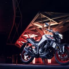 Foto 20 de 25 de la galería yamaha-mt-03-2020 en Motorpasion Moto
