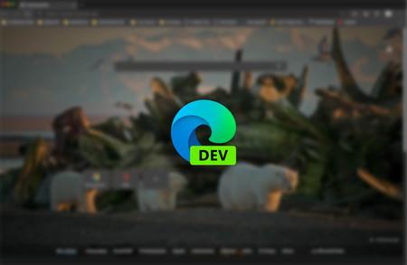 Edge se actualiza en el Canal Dev: llegan mejoras de funcionamiento y un juego sin conexión, Surf, para amenizar los ratos de ocio
