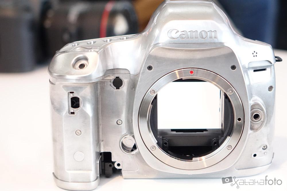Foto de Canon EOS 5Ds y 5Ds R (1/14)