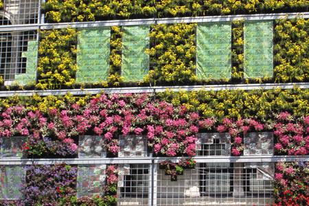Fachada jardín - 3