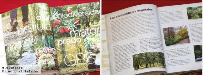 El Bosque. Libro