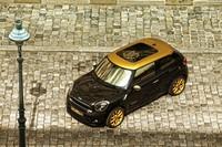 El Mini Paceman Cooper S se vuelve fashionista. Y todo gracias a Roberto Cavalli