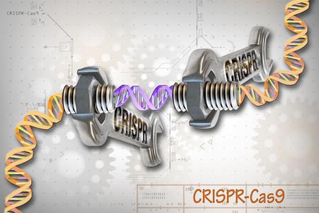 La batalla legal por CRISPR está poniendo en peligro a toda la ciencia contemporánea