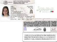 IFE podría encriptar el domicilio en la credencial de elector