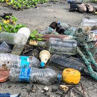 Platos, cubiertos y vasos de plástico desechables dirán adiós en 2021: la Eurocámara acaba de aprobar su prohibición