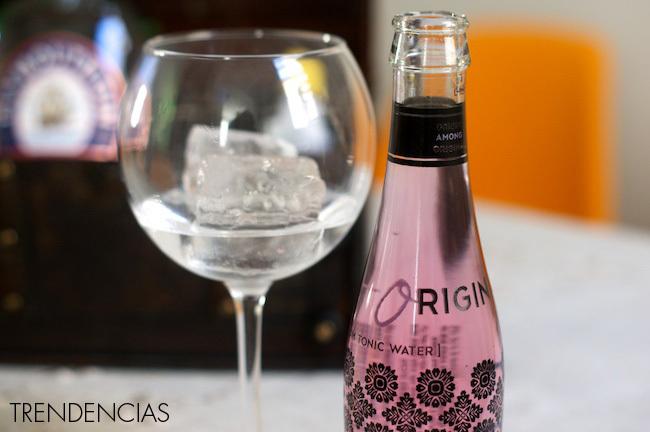 Pink Gin - cóctel San Valentín - 3