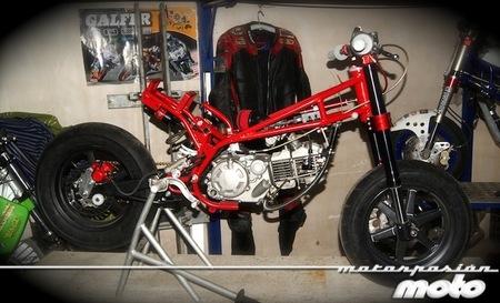 Prototipo miniGP con motor pitbike