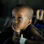 África sufre una epidemia peor que el ébola: la malaria. El 50% de todo Burundi ya está infectado