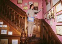 Descubre los interiores de Wes Anderson