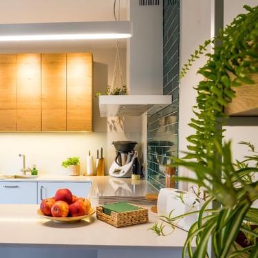 Cuatro ideas para crear tu propio huerto vertical en tu cocina (y 11 ventajas de tenerlo)