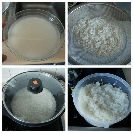Collage Arroz
