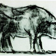 Foto 1 de 11 de la galería toro-de-picasso en Applesfera