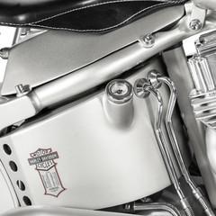 Foto 14 de 24 de la galería hd-iron-riot en Motorpasion Moto